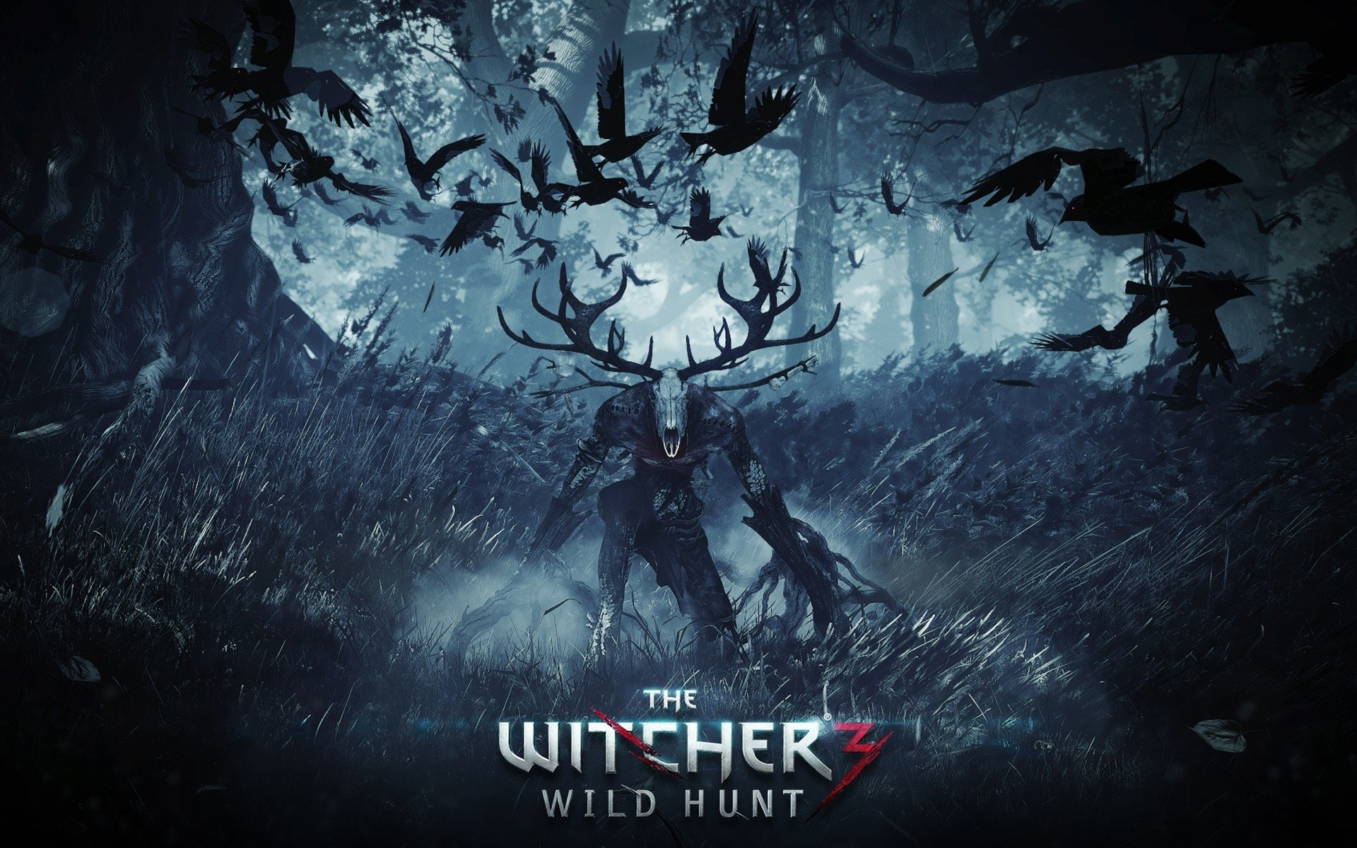 the witcher 3 testi görsel 5