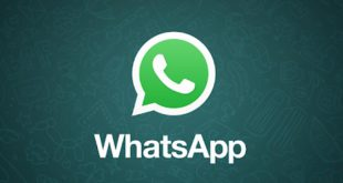brezilya whatsapp